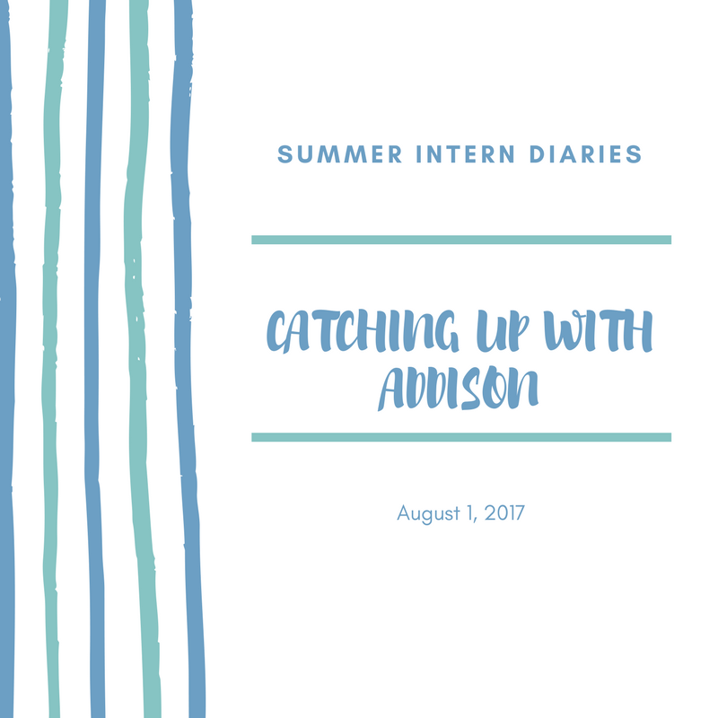 summer intern diaries